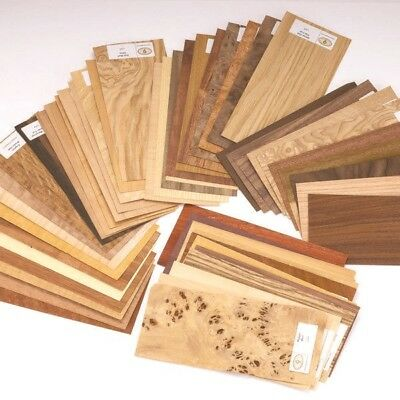 50 pc Wood Veneer Mixed Pack - Identification Kit Domestic & Exotic Raw/Unbacked