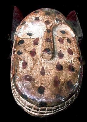 Outstanding Tribal Bozo leopard  Ceremonial  Spotted   Mask  ---  Mali  BN 44