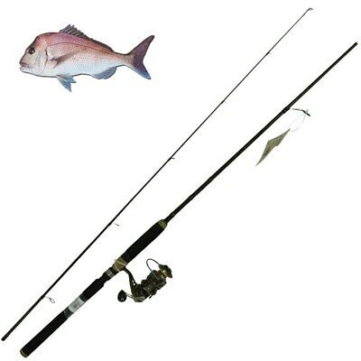 Snapper Fishing Rod & Reel Combo - Shakespeare Wild Series