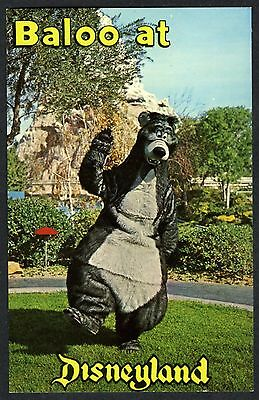 "1960s DISNEYLAND ""BALOO"" BEAR CHARACTER with MATTERHORN MOUNTAIN~UNUSED POSTCARD"