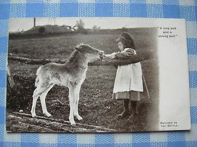Vintage Postcard - Donkey - ''a Long Pull And A Strong Pull ''