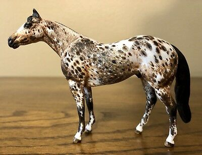Peter Stone Detailed Loud Appaloosa Stock Horse Chips LSQ By Capwell