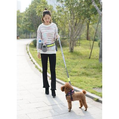 Hands Free Running Dog Lead/ Adjustable Waist Lead with pouch,Pet Leash Gray