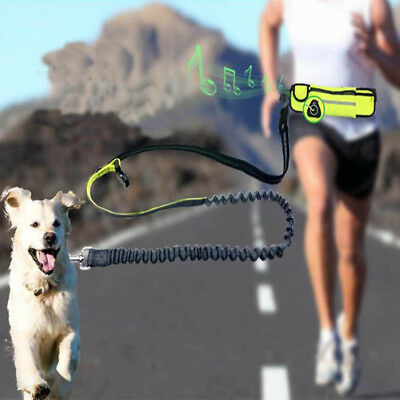 Hands Free Running Dog Lead/ Adjustable Waist Lead with pouch, Pet Leash 3 Color