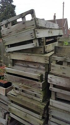 VINTAGE WOODEN POTATO CHITTING TRAY CRATE X 55 in varying Conditions