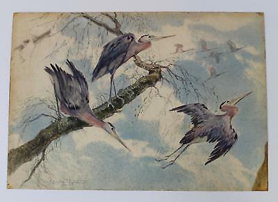 Antique ALFRED CONWAY PEYTON Watercolor Painting, Great Blue Heron Birds, NR