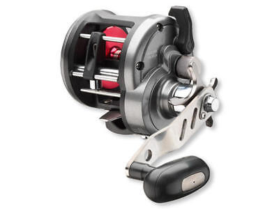 Daiwa Sealine 30 LWLA - Linkshand Multirolle - Norwegen geeignet