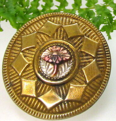Unique Lg. Victorian Gilt Metal Button W/ Cameo Carved Pearl Flower Z51