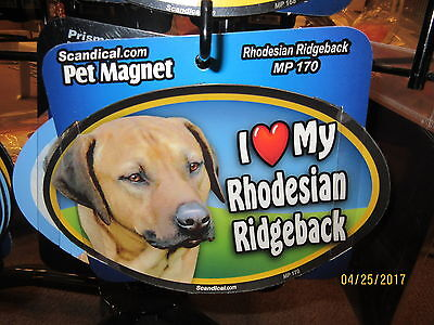 I Love My Rhodesian Ridgeback 6 inch oval magnet for car or anything metal  New