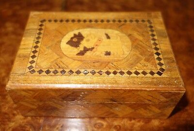 Small box with parquetry and marquetry of a Scottie & a Westie