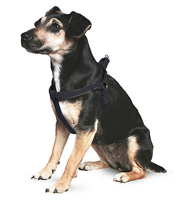 Ancol Reflective Padded Harness Large / Black