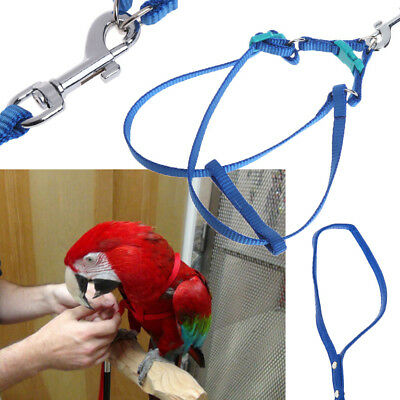 Anti-bite Adjustable The Aviator Bird Parrot Harness Leash Small Large