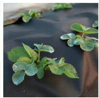 New Weed Control Cover Fabric Membrane Ground Sheet  Garden Driveway Uk
