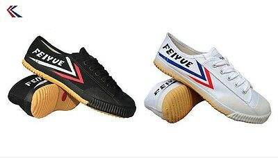 2nd Pair Feiyue Shoes