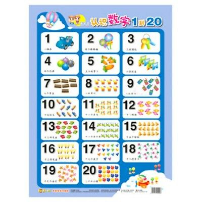 Baby Toddler Learning To Count Wall Chart Number 1 to 20 Learning Wall Chart Toy