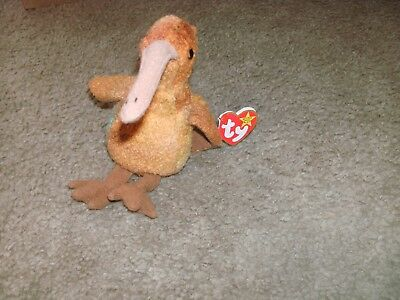 "Used Retired Ty Beanie Babies ""beak"" The Kiwi Bird With Tags Free Shipping"