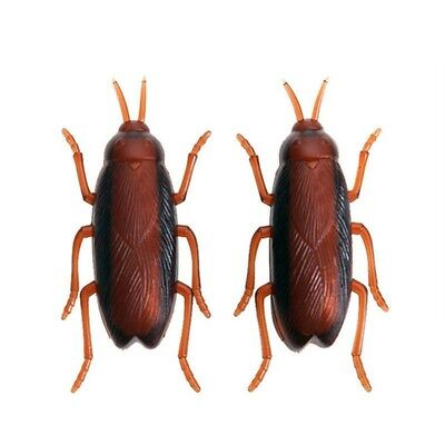 Funny Simulation of Cockroaches Pet Cat Dog Interactive Training Playing Toy