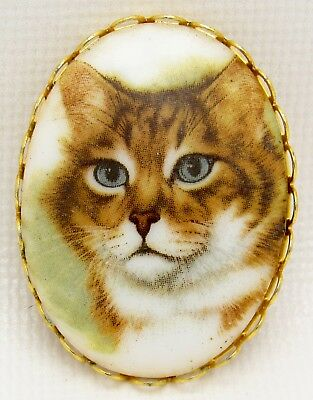Vintage Gold Tone Porcelain Picture of Tabby Kitty Cat Brooch Pin Blue Eyes