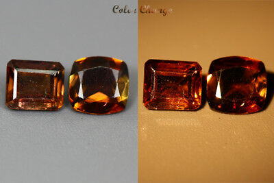 1.595 Ct  Earth Mined Unique Dazzling 100% Natural Dancing' Color Change Axinite