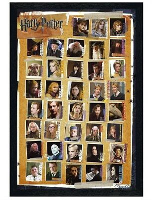 Harry Potter in schwarzes Holz eingerahmtes Character Montage Poster 61x91,5cm