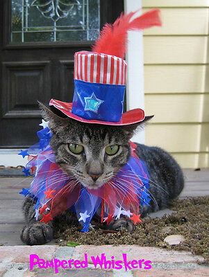 Uncle Sam hat for cats and dogs and Stars n Stripes party collar