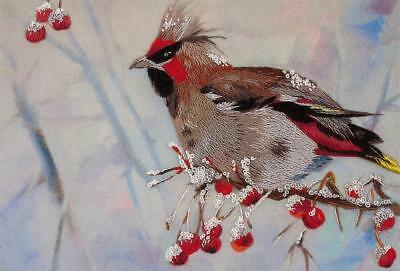 Panna Printed Satin Stitch Embroidery Kit JK-2028 Waxwing Bird Berries in Snow