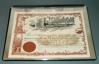 New Archival Ring-Binder Album for Stock Certificates w// 80 Mylar Pages