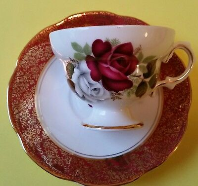 Beautiful Rosina Cup and Saucer