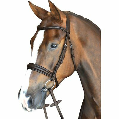 Brown All Sizes Collegiate Mono Crown Padded Unisex Saddlery Crank Noseband