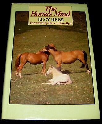 Horse Book 1985 The Horse's Mind Lucy Rees Pictorial Body Language & Social Life
