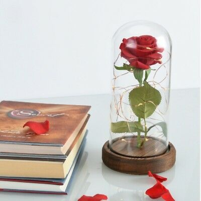 UK Beauty and the Beast Rose Lamp with Fallen Petals in a Glass Dome on a Wooden