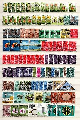 EAST AFRICA QE11 GOOD TO FINE USED COLLECTION/ACCUMULATION x 720+ STAMPS