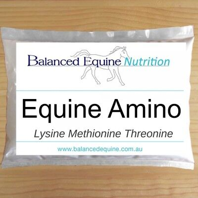 NEW Equine Amino - Free Shipping