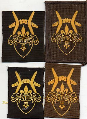 Vic  Scout Badge