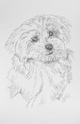 Maltese Two Dog Breed Art Print #22 Stephen Kline Signed Drawing from Words