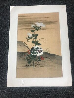 Vintage Old Japanese Wood Block Print A White Cat Hanabusa Itcho Japan