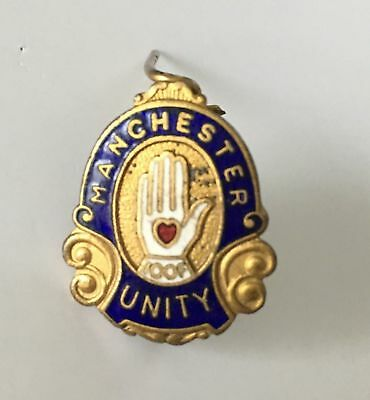 Manchester Unity Enamel IOOF badge pin **FREE POSTAGE** By Angus & Coote