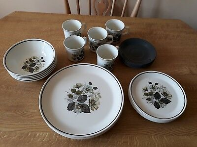 Vintage Johnson Brothers Used 5 Place 30 Piece Wildmoor Pattern Dinner Service
