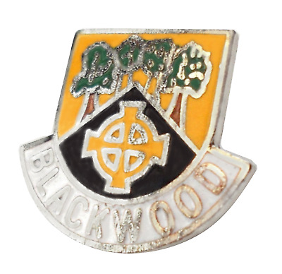 Rhosllannerchrugog Town Wales Crest Small Pin Badge 0504