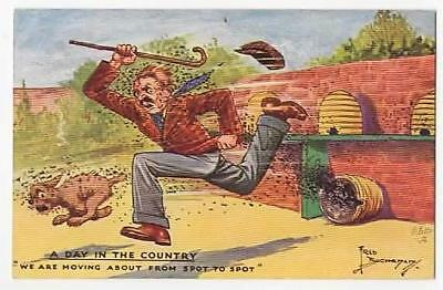 Vintage A/s Postcard,fred Buchanan,day In The Country,man & Bees,tucks 3009,1943