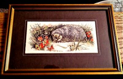 Cash's Silk Embroidery - Wildlife - Hedgehog Framed + Glass