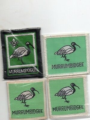 Nsw  Scout Badge       Murray X 2