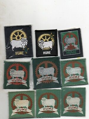 Nsw  Scout Badge     Hume X 9