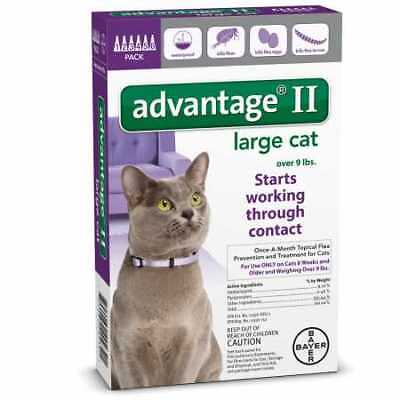6 MONTH Advantage II Flea Control Large Cat (for cats over 9 lbs) PURPLE