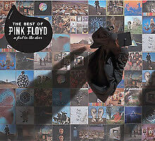 The Best of Pink Floyd - A Foot In The Door by Pink Floyd CD [New]