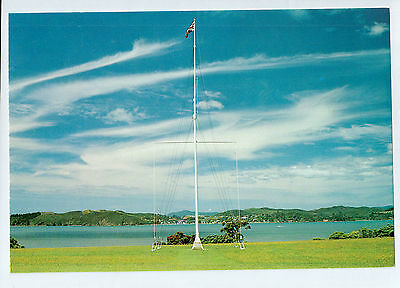 C1902cgt New Zealand Waitangi Flagpole Treaty House postcard