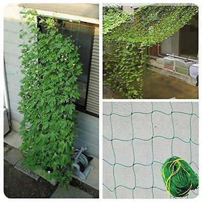 Green Nylon Trellis Netting - Plant Support Climbing Grow Tent Garden JJ