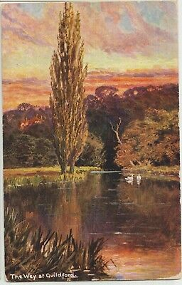 GUILDFORD On the Way Sussex Beautiful Vintage Colour PC 1906