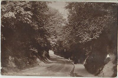 BEXHILL ON SEA Chantry Lane Lady Child Sussex Vintage PC c1905