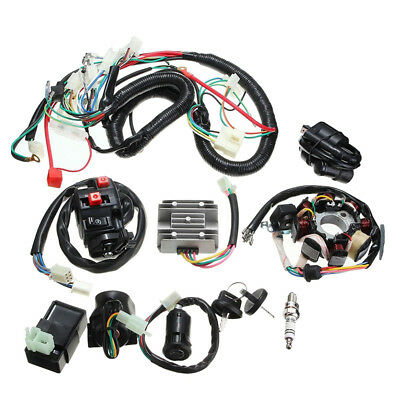 Full Electrics Wiring Harness Wire CDI Stator New for Motorcycle ATV QUAD 250CC